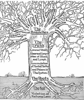 Lindlahr Tree of illness